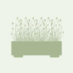 icoon-buitenbeplanting